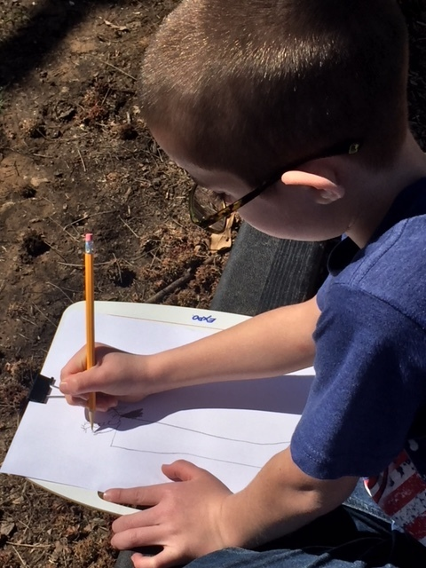 Kids drawing outside in art